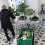 会場準備中。ポエトリーインスタレーションを爽やかに彩る盆栽的ななにか製作中。